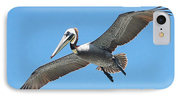 IPhone Case featuring the photograph Pelican Landing On  Pier by Tom Janca