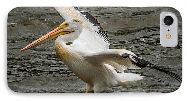 Pelican Landing IPhone Case by Paul Freidlund