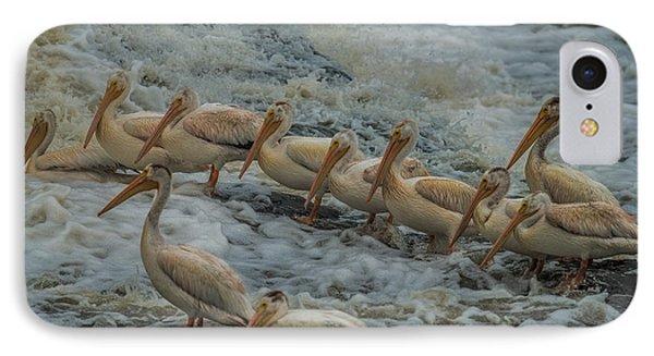 Pelican Lineup IPhone Case by Paul Freidlund