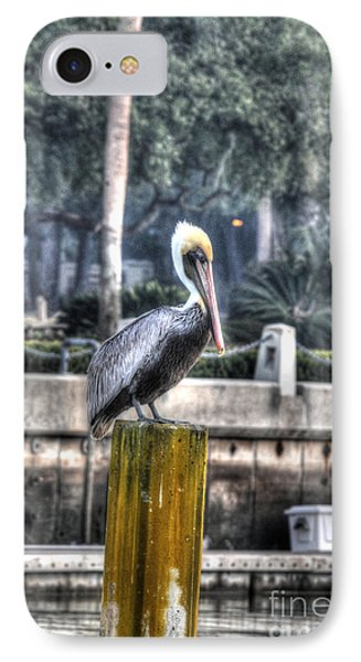 Pelican On Water Post Phone Case by Dan Friend