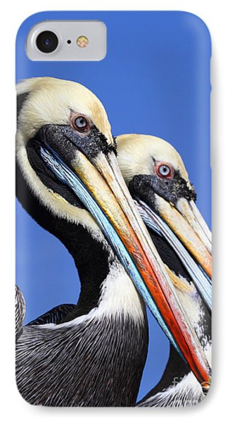 Pelican Perfection Phone Case by James Brunker