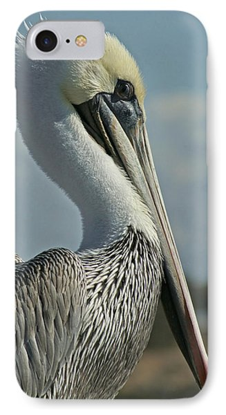 Pelican Profile 3 IPhone Case by Ernie Echols