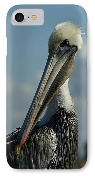 Pelican Profile IPhone Case by Ernie Echols