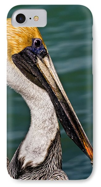 Pelican Profile No.40 IPhone Case by Mark Myhaver