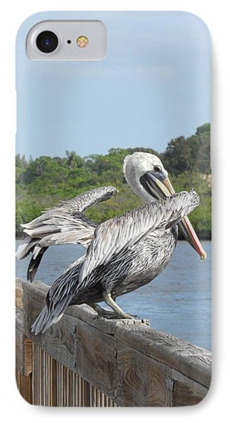 Pelican Ready For Flight IPhone Case by Deb Jazi Raulerson