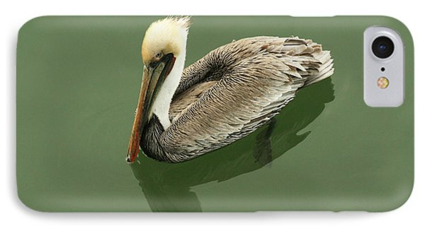 Pelican Reflection IPhone Case