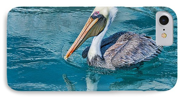 IPhone Case featuring the photograph Pelican Reflection by Don Durfee