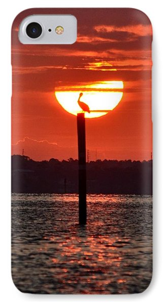 Pelican Silhouette Sunrise On Sound Phone Case by Jeff at JSJ Photography