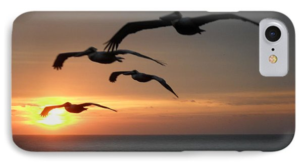 IPhone Case featuring the photograph Pelican Sun Up by Laurie L