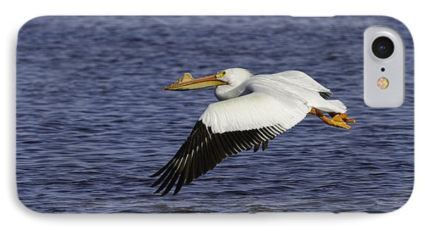 Pelican Taking Off IPhone Case by Thomas Young