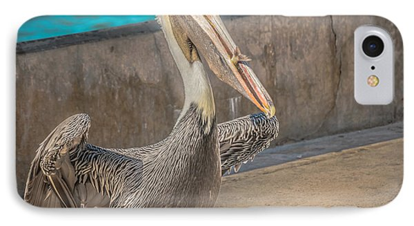 Pelican With Fish White Street Pier Key West - Square - Hdr Style IPhone Case