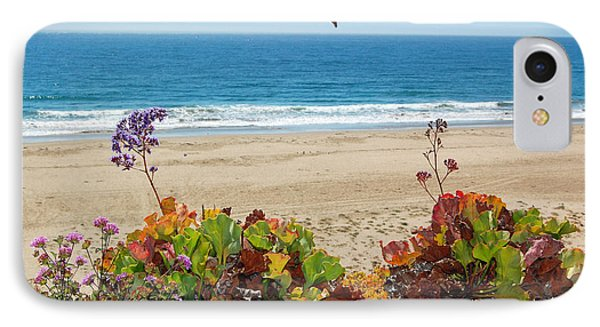 Pelicans And Flowers On Pismo Beach IPhone Case by Debra Thompson