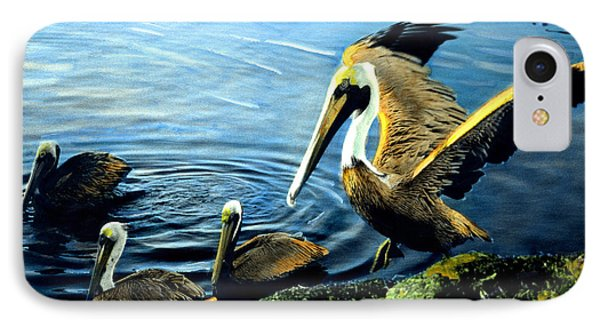 Pelicans IPhone Case by Cindy McIntyre