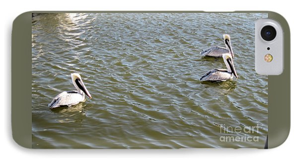 IPhone Case featuring the photograph Pelicans In Florida by Oksana Semenchenko