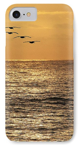 Pelicans Ocean And Sunsetting IPhone Case by Tom Janca