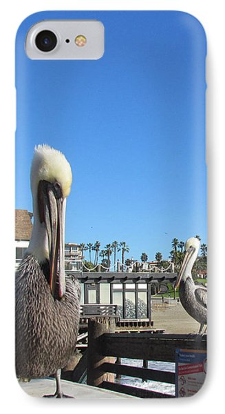 Pelicans On Pier IPhone Case