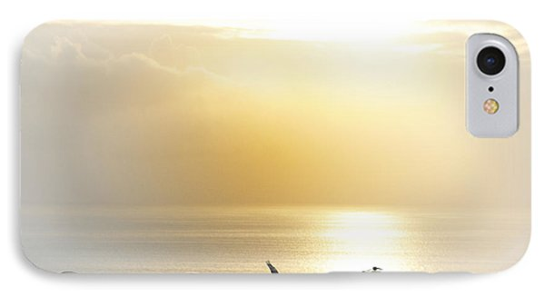 Pelicans Over Malibu Beach California Phone Case by Artist and Photographer Laura Wrede