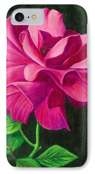 Pencil Rose IPhone Case by Janice Dunbar