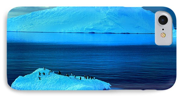 Penguins On Iceberg IPhone Case