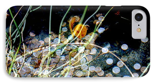 IPhone Case featuring the photograph Pennies In The Pond by Irma BACKELANT GALLERIES