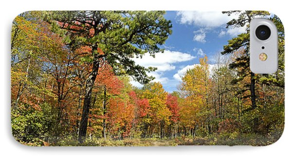 Pennsylvania Forest In Autumn Pocono Mountains IPhone Case by A Gurmankin