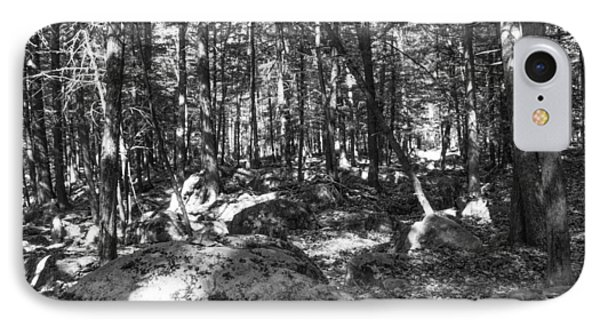 Pennsylvania Forests Lan 347 IPhone Case by G L Sarti