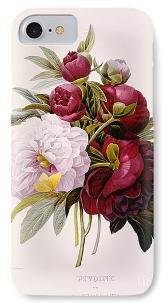 Peonies Engraved By Prevost IPhone Case by Pierre Joseph Redoute