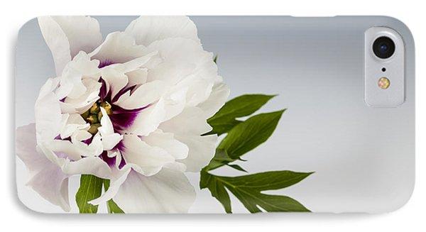 Peony Flower On Gray IPhone Case