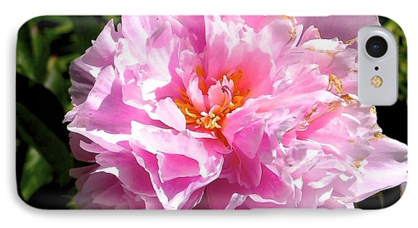 Peony IPhone Case by Sher Nasser