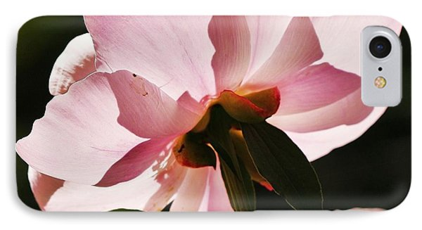 Peony Shines... IPhone Case by Al Fritz