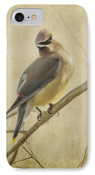 Perching Waxwing IPhone Case by Jeff Swanson