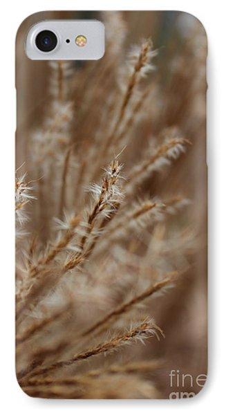 Perennial Grass Phone Case by Arlene Carmel