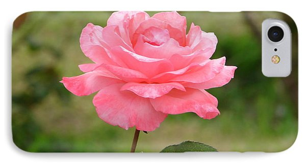 IPhone Case featuring the photograph Perfect In Pink by Lew Davis