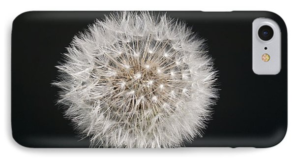 Perfect Puffball IPhone Case by Richard Thomas