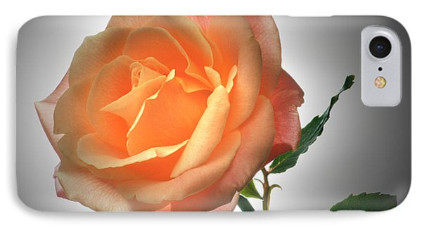 Perfect Rose. IPhone Case by Terence Davis