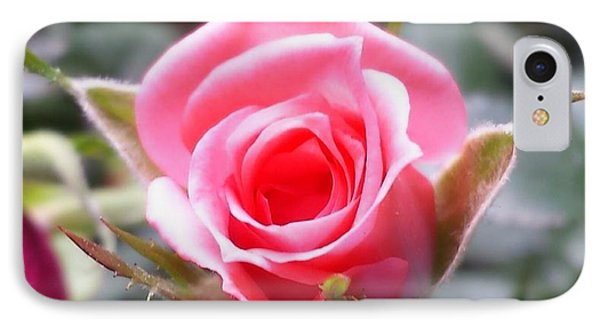 Perfect Rosebud In True Color IPhone Case by Becky Lupe