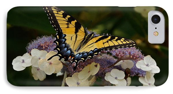 Perfect Tiger Swallowtail Butterfly Phone Case by Byron Varvarigos