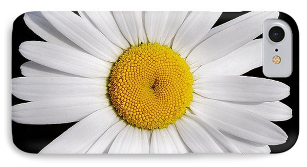 Perfectly Daisy IPhone Case by Kathi Mirto