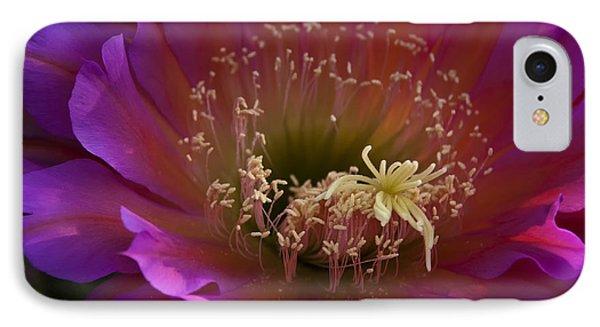 Perfectly Pink  Phone Case by Saija  Lehtonen