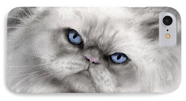 Persian Cat With Blue Eyes Phone Case by Svetlana Novikova