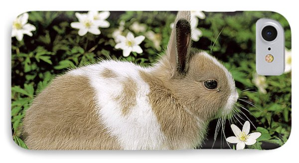 Pet Rabbit Phone Case by Hans Reinhard/Okapia