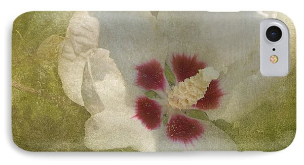 Petals In Shadows IPhone Case by Kathi Mirto