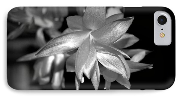 Petals Of Silver IPhone Case by Linda Prewer