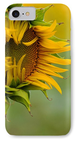 IPhone Case featuring the photograph Petals by Ronda Kimbrow