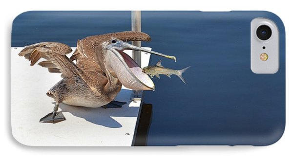 Pete The Pelican And The Doomed Fish IPhone Case by Pamela Blizzard