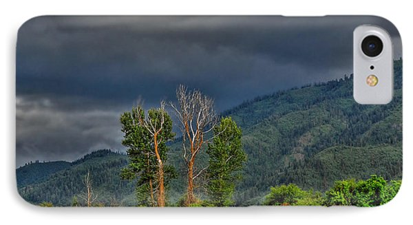 IPhone Case featuring the photograph Petes Trees by Sam Rosen
