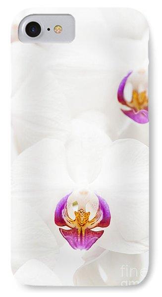 Phalaenopsis Phone Case by Anne Gilbert