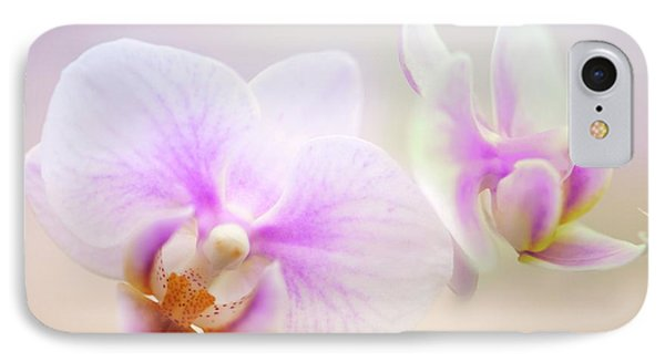 Phalaenopsis 'sweetheart' Orchid Flowers IPhone Case by Maria Mosolova