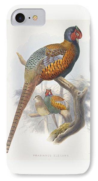 Phasianus Elegans Elegant Pheasant IPhone 7 Case by Daniel Girard Elliot