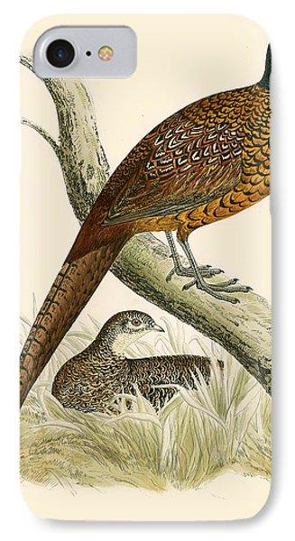 Pheasant IPhone 7 Case by Beverley R Morris